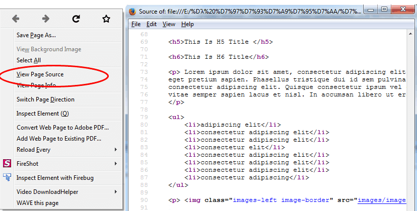 View HTML Code