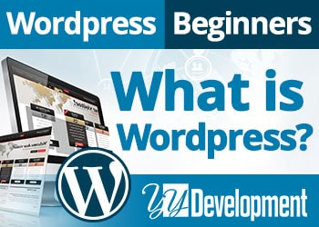 What Is WordPress? And What You Do With It?